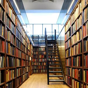 Библиотеки Пителино